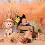 نمونه کار نوزاد با تم مزرعه